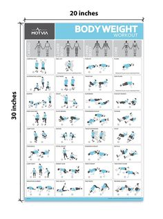 image result for planet fitness workout plan pdf  planet