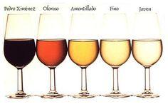 <p>Al referirnos al vino de Jérez hablamos de un método de elaboración único que encumbra a estos vinos, dentro de cualquier calificación, como de los mejores del mundo. Este método de elaboración tan curioso tiene dos componentes: Uno marcado por un tipo de levaduras que sólo se dan en el …</p>