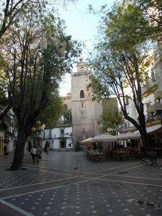 marinainblue from Jerez: Jerez, a walk in the morning/ Jerez, un paseo por la mañana