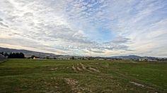 Rezervaţia Naturală Valea Zimbrilor din Vama Buzăului   Jurnal de Hoinar