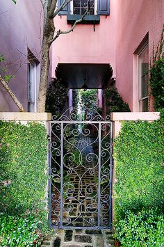 A gate in the city which is well-known for its beautiful architectures, gardens, gates, and fences | Charleston, SC
