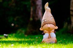 Soñar con enanos trata de advertirnos que imagen estamos ofreciendo o como nos vemos nosotros mismos frente a otras personas... Project Yourself, Make It Yourself, British Garden, Rare Species, Terrarium Plants, Gnome Garden, Home Ownership, Garden Sculpture, Home And Garden