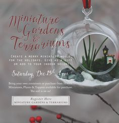 It's been awhile since we have had a Miniature Gardens and Terrariums Workshop. Don't miss out!