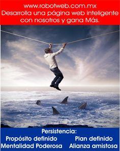 La persistencia :www.robotweb.com.mx, hace la diferencia.