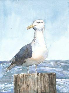 Seagull Original Watercolor Painting