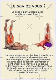 « Planches Musculo-squelettique des positions de Yoga - N°23 » par rodolphe Augusto | Redbubble