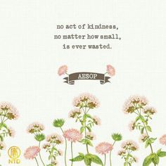 No act of kindness, no matter how small, is ever wasted