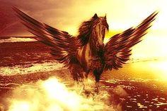 »»» Krafttier Pegasus: In der Mythologie ist dieses geflügelte Pferd...    #krafttier