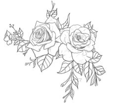 I know its not very small but I waswondering if you could give me your opinion on my tattoo drawing andif you could give me some ideas to improve it? Im thinking of getting this doneon the back of my left shoulder with part of the rose and leaves trailing downthe back of my left arm :) Wow you drew this? I love it! I like the idea of the leaves trailing down too! Please submit a picture when you get it done!!