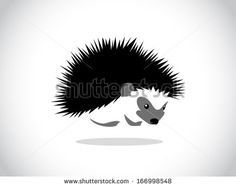 image graphic style of hedgehog isolated on white background