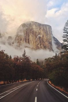 Yosemite National Park, California, USA by Zach Bresnick.: