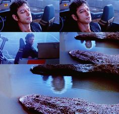 """I'm fairly alarmed here.""  Jurassic Park"