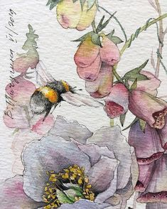 Illustration with summer mood 🐝🌸☀️ ⠀ 🎨 Watercolorist: ⠀ Colorful Art, Art Painting, Botanical Art, Illustration, Art Drawings, Watercolor Flowers Paintings, Painting, Watercolor Flowers, Art