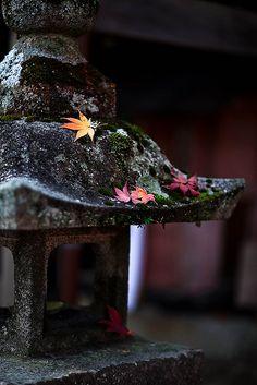 *pagode