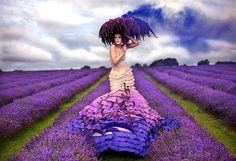 Dama nos campos de lavanda