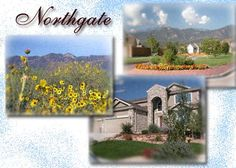 The Northgate community is located in northeast Colorado Springs, just east of the northern entrance of the Air Force Academy. Description from hellocoloradosprings.com. I searched for this on bing.com/images
