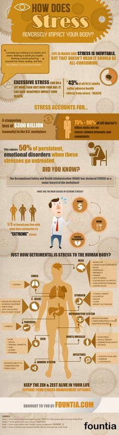 how stress affects the body essay