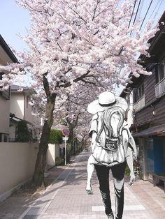 cherry blossom in japan street Aesthetic Japan, City Aesthetic, Aesthetic Backgrounds, Aesthetic Wallpapers, Cherry Blossom Japan, Cherry Blossoms, Japon Tokyo, Japan Street, Japanese Streets