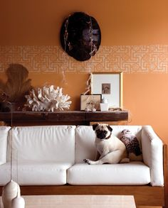 To get this look, use Colorhouse CLAY .02
