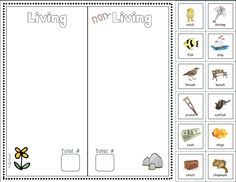 Printables Living Vs Nonliving Worksheet living vs nonliving sort worksheet grade 1 pinterest cut phonics focus non objects each focuses on a