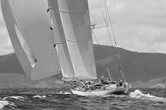 The sailing vessel Windrose reaches off the coast of Antigua. Black N White Images, Black And White, Sailboat Racing, Classic Sailing, Sail Away, Sailing Ships, Sailing Yachts, Sailing Boat, Wooden Boats