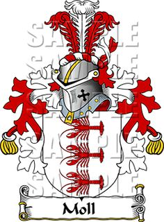 de Winter Family Crest apparel, de Winter Coat of Arms gifts Family Research, Family Crest, Crests, Coat Of Arms, Family History, Dutch, Disney Characters, Fictional Characters, Finding Yourself