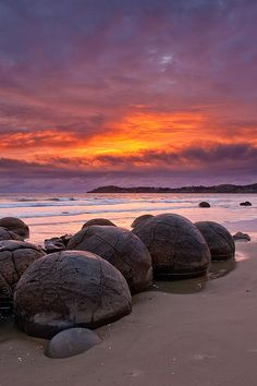 Moeraki Boulders are unusually large and spherical boulders lying along a stretch of Koekohe Beach on the wave cut Otago coast of New Zealand between Moeraki and Hampden. They occur scattered or isolated. The erosion by wave action of mudstone, comprising local bedrock and landslides, frequently exposes embedded isolated boulders. These boulders are grey-colored septarian concretions, which have been exhumed from the mudstone enclosing them and concentrated on the beach by coastal erosion.