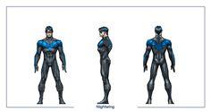 Nightwing- DC Universe Online