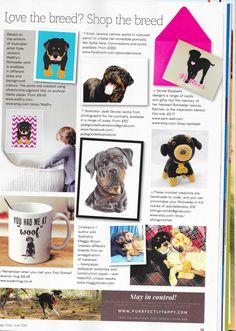 DogsToday June issue. www.maggybrown.com