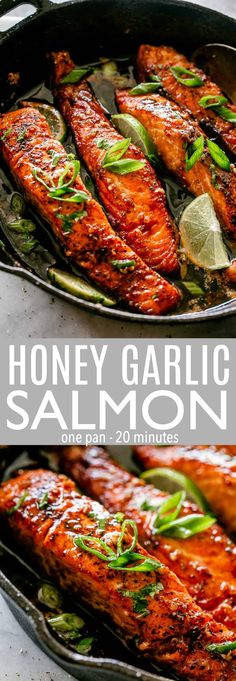 Honey Garlic Sauce Salmon - Crispy, tender and SO DELICIOUS salmon fillets pan-f. - Honey Garlic Sauce Salmon – Crispy, tender and SO DELICIOUS salmon fillets pan-fried in the most - Salmon Dinner, Seafood Dinner, Pan Fried Salmon Fillet, Pan Cooked Salmon, Baked Salmon, Salmon Recipe Pan, Salmon Sauce, Recipes For Salmon Fillets, Salmon Belly Recipes
