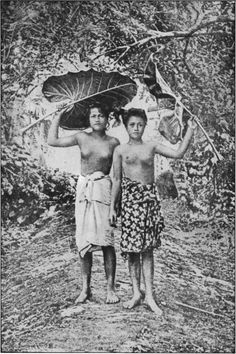 """Maids of Honour of a Samoan Village """"Taupo"""" Tribal People, Tribal Women, Vintage Photographs, Vintage Photos, Samoan Women, Indigenous Tribes, African Tribes, Historical Pictures, People Of The World"""