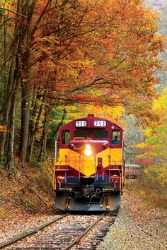 Autumn - The Great Smoky Mountains Railroad, Bryson City, North Carolina Great Smoky Mountains, Dark Mountains, Smokey Mountain, By Train, Train Tracks, Train Rides, Train Trip, Blue Ridge Parkway, Bryson City North Carolina