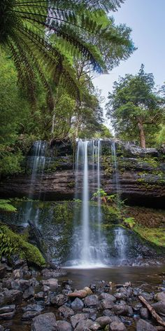 Chasing waterfalls in Tasmania - by Paul Pichugin Beautiful Waterfalls, Beautiful Landscapes, Landscape Photography, Travel Photography, Tasmania, Wanderlust Travel, Australia Travel, Beach Trip, Location