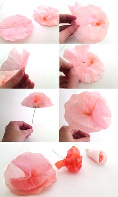 Lemon Jitters: DIY Flowers: Cupcake Wrappers & Coffee Filters
