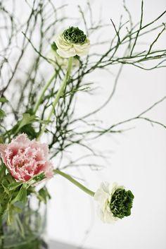 beautiful flower bouquet tulips ranunculus, Blumenstrauß rose Tulpen und Ranunkeln