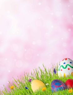 Easter Eggs On Grass With Bokeh Photography Backdrop Easter Wallpaper, Cool Wallpaper, Snoopy The Dog, Easter Paintings, Congratulations Greetings, Easter Backgrounds, Christmas Journal, Greetings Images, Pink Texture