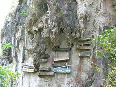 Cool Pictures, Funny Pictures, Crazy Pictures, Weird Pictures and Videos updated daily. Sagada, Weird Pictures, Dubrovnik, Coffin, Picture Video, Philippines, Tourism, House Styles, Places