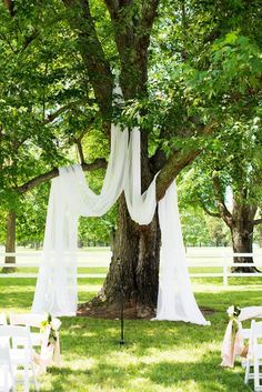 drape sheer curtains over a shaded tree for a simple yet beautiful wedding…
