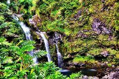 Upper Waikani (Three Bears) Falls, Road to Hana, Maui