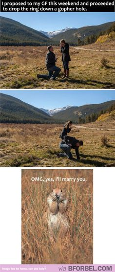 Hilarious Proposal Story…and the added bonus of a prairie dog :D