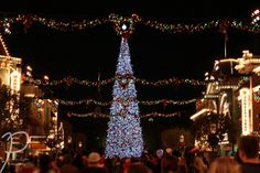 IMG_9974 | Flickr Disneyland Christmas