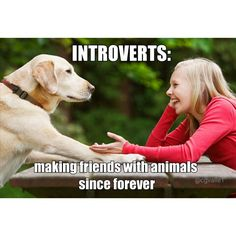 Introverts: Making friends with Animals - Introvert Memes Introvert Quotes, Introvert Problems, Introvert Cat, Infp Personality, Myers Briggs Personality Types, Myers Briggs Personalities, Love Dogs, Story Of My Life, Laughter