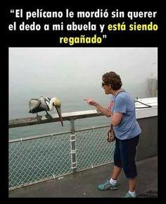 FOTOS GRACIOSAS #lol #lmao #hilarious #laugh #photooftheday #friend #crazy #witty #instahappy #joke #jokes #joking #epic #instagood #instafun #memes #chistes #chistesmalos #imagenesgraciosas #humor #funny #amusing #fun #lassolucionespara #dankmemes #lmao #dank #funnyposts
