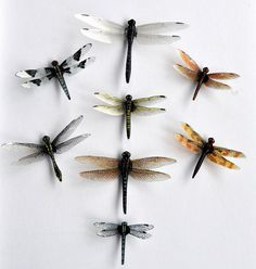 Dragonfly Magnets Clear wing Wholesale Lot by DougWalpusArtStudio, $15.00