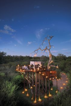 Lion Sands Ivory Lodge in the Kruger Game Reserve, South Africa offers an overnight 'treehouse experience'. http://www.i-escape.com/lion-sands-ivory-lodge/overview