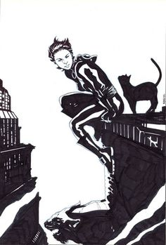 Catwoman by Karl Kerschl...love the Catwoman with the short hair.