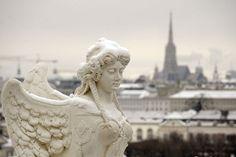 Snow Angel • Vienna