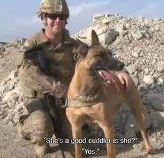 Two men and their bomb dogs