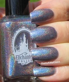 Enchanted Polish Future Reflections