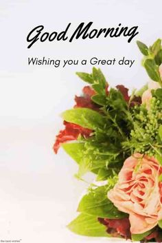 Best Good Morning HD Images, Wishes, Pictures and Greetings Best good morning beautiful images with bouquet. Good Morning Romantic, Good Morning Flowers Pictures, Good Morning Kisses, Good Morning Beautiful Flowers, Good Morning Nature, Good Morning Love Messages, Good Morning Beautiful Images, Good Morning Photos, Morning Pictures